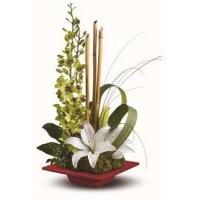 Florist Choice FC003-200x200.jpg