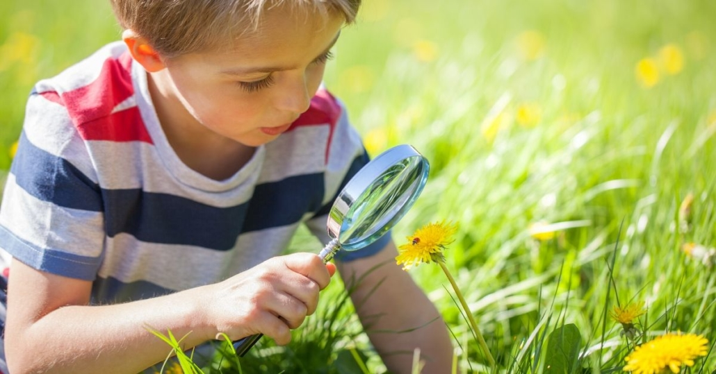 photo of a young boy using a magnifying glass to look at a lady bug