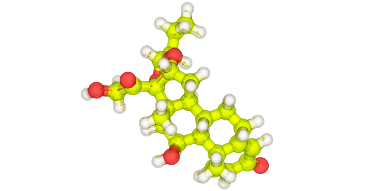 A molecular model of budesonide